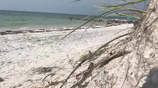Researches studying erosion caused by Irma - Digital Short - Video