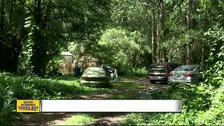Elderly homeowner fatally shots intruder, Hillsborough County sheriff's deputies say - Video