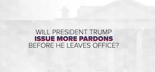 Who might Trump pardon before he leaves office?