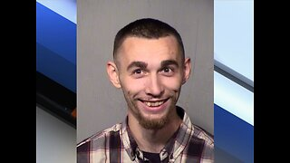 "Man arrested after throwing puppy ""like a baseball"" - ABC15 Crime"