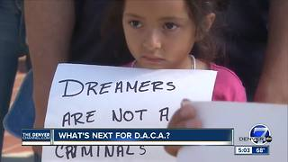 What's next for DACA?