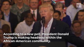 New Poll: Donald Trump's Support Among African-Americans Has Gone up by a Lot Since 2016 - Video