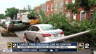 Monday's storm leaves damage in its wake - Video