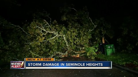 Storm damage reported in Seminole Heights