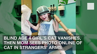 Blind Age 4 Girl's Cat Vanishes, Then Mom Sees Photo Online of Cat in Strangers' Arms - Video