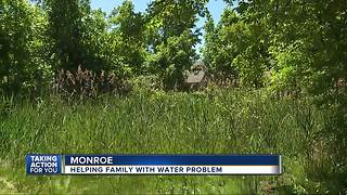 Metro Detroit family facing water drainage nightmare, mosquito infestation