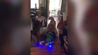 An Awesome Dog Jimping On Hoverboard With His Pal - Video