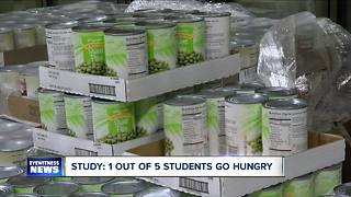 Gov. Cuomo wants all SUNY schools to have food pantries - Video