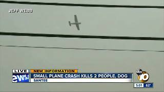 Small plane crash kills 2 people, dog - Video