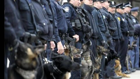 Fascinating quick history of Police K9 Units