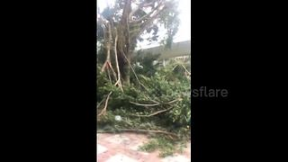 Typhoon Hato batters Macau, China - Video