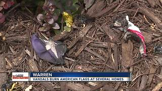 American flags in front of metro Detroit homes burned by vandals - Video
