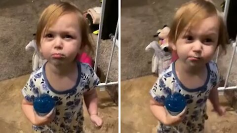 Toddler rats out dad in absolutely hysterical fashion