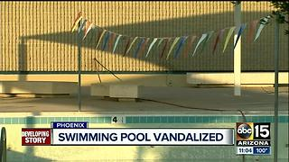 Vandals throw white paint into Phoenix pool shutting it down - Video