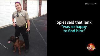 K9 officer finds missing boy with autism on his first day on the job - Video