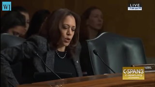 Kamala Harris Hammered For 'Disgusting' Remarks Comparing Ice To Kkk