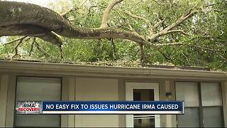 Lawmakers Grappling Lessons Learned From Hurricane Irma - Video