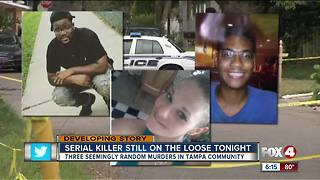 Serial killer on the loose in Tampa - Video