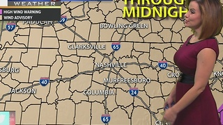 Bree's Evening Forecast: Monday Nov. 28, 2016 - Video