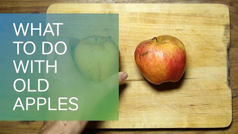 Waste not want: what to do with old apples