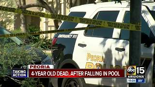 4-year-old dies after being pulled from babysitter's pool in Peoria - Video
