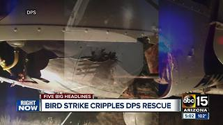 Bird strike causes significant damage to DPS helicopter - Video