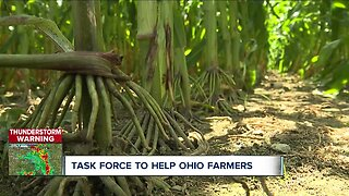 The Ohio State University creates task force to help struggling farmers