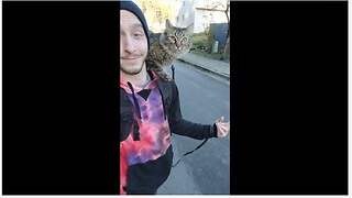 Super unique cat rides skateboard with owner - Video