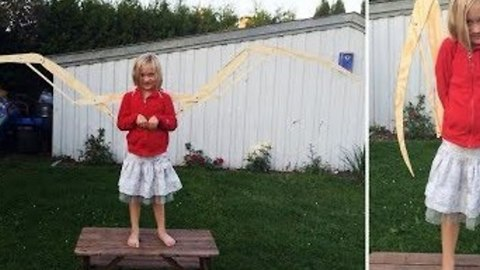 Dad Creates Impressive Wingspan For Daughter's Toothless Costume