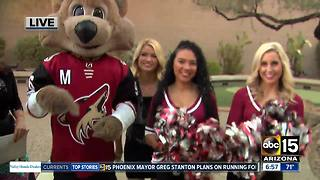 Get a great deal on tickets to the Arizona Coyotes - Video