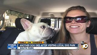 Another dog dies after visiting local dog park - Video