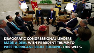 President Trump Strikes A Deal With Democrats - Video