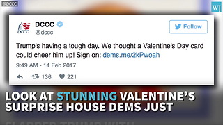 Look At Stunning Valentines Surprise House Dems Just Slapped Trump With - Video