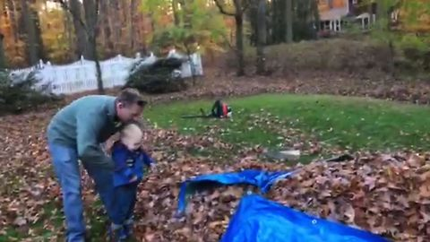 Baby Experiences His First Leaf Pile