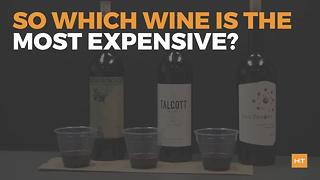 In a blind taste test, these people chose the cheap wine over the expensive stuff | Hot Topics - Video