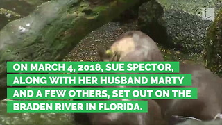 Wild Otter Attacks Age 77 Woman, Bites off Part of Ear - Video