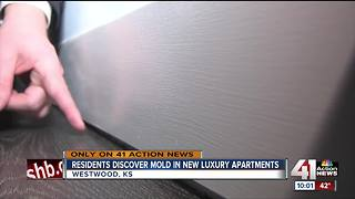 Mold issues plague high-end Westwood apartment - Video