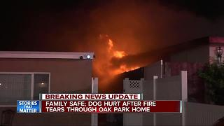 Family flees Oak Park house fire; dog injured - Video