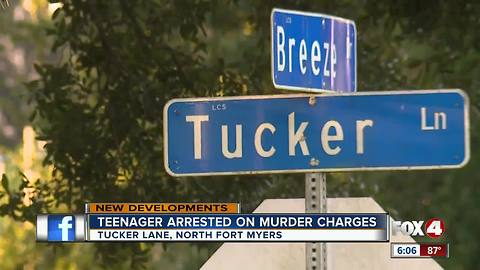 Teenager Arrested on Murder Charges