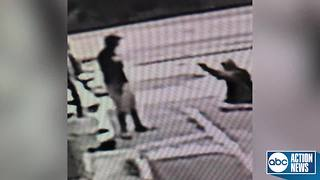 Fight over parking spot leads to deadly shooting in Clearwater | Surveillance video - Video