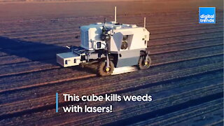 This cube kills weeds with lasers!