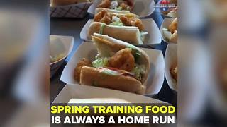 What to eat at Spring Training in Tampa Bay | Taste and See Tampa Bay - Video