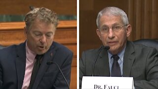 Brawl For It All! Paul Takes On Fauci In Epic COVID Throwdown