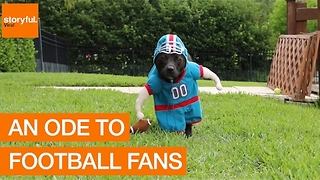 An Ode to Football Fans - Video