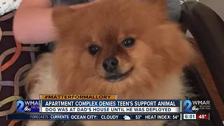 Apartment complex denies boy's support animal - Video