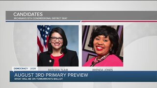 Primary preview: Congressional races