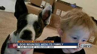 Dog reunited with family after taken by delivery man