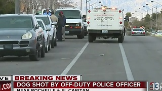Off-duty police officer shoots attacking dog - Video