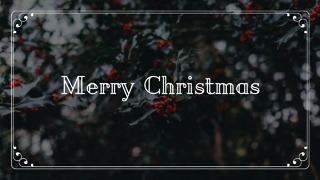 Christmas Greeting Card #5 - Video