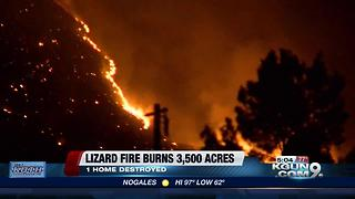 Lizard Fire torches 3,500 acres, forces dozens of evacuations